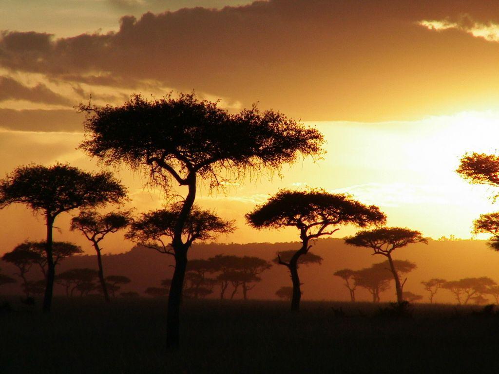 Картинки по запросу кения